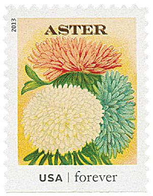 2013 First-Class Forever Stamp - Vintage Seed Packets: Aster