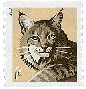2013 1c Bobcat