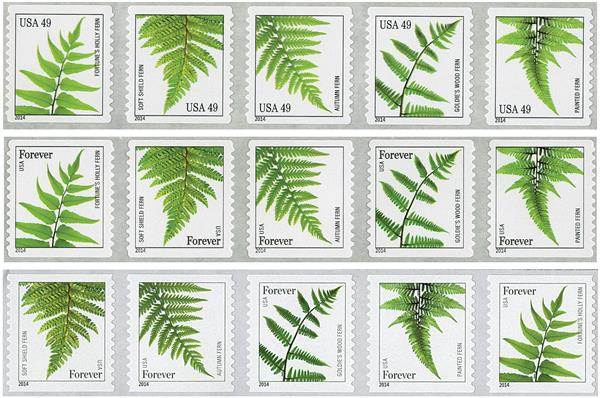 2014-15 Ferns, collection of 15 stamps