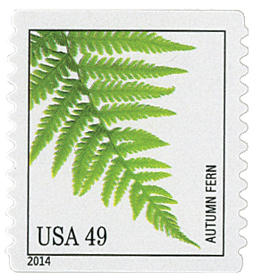 2014 49c Ferns: Autumn Fern