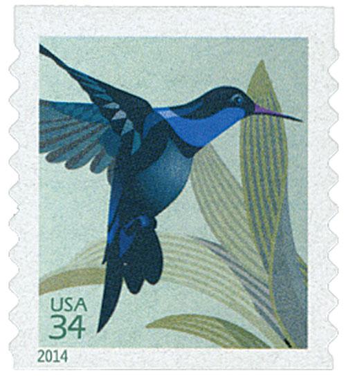 2014 34c Hummingbird, coil