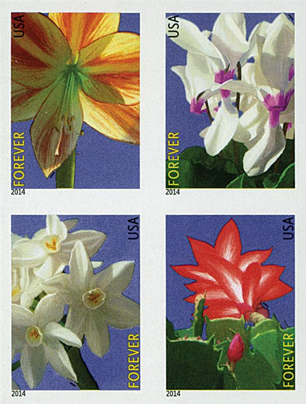 2014 First-Class Forever Stamp - Imperforate Winter Flowers
