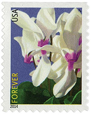 2014 First-Class Forever Stamp - Winter Flowers: Cyclamen