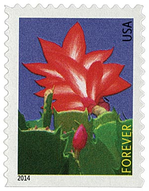 2014 First-Class Forever Stamp - Winter Flowers: Christmas Cactus