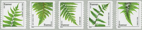 2014 First-Class Forever Stamp - Ferns (non-denominated)