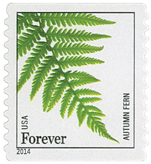 2014 First-Class Forever Stamp - Ferns (non-denominated): Autumn Fern