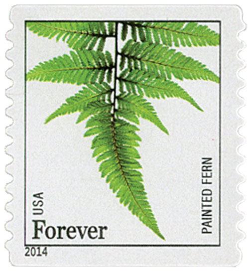 2014 First-Class Forever Stamp - Ferns (non-denominated): Painted Fern