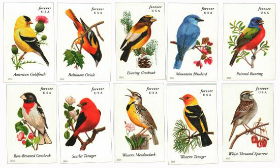 2014 First-Class Forever Stamp - Imperforate Songbirds