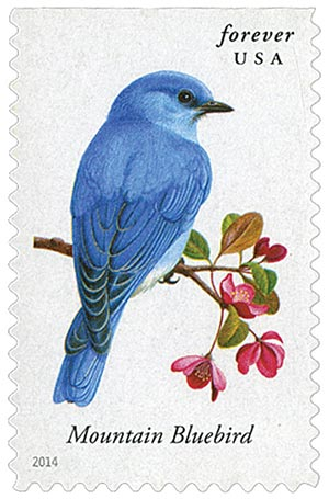 2014 First-Class Forever Stamp - Songbirds: Mountain Bluebird