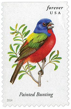 2014 First-Class Forever Stamp - Songbirds: Painted Bunting