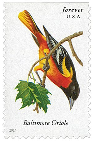 2014 First-Class Forever Stamp - Songbirds: Baltimore Oriole