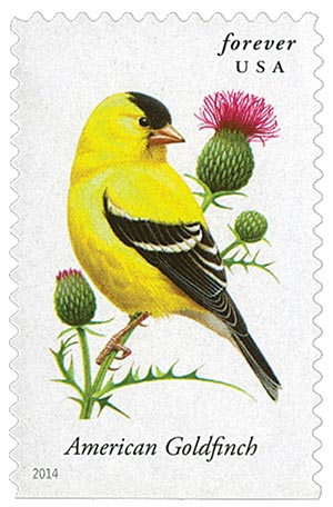 2014 First-Class Forever Stamp - Songbirds: American Goldfinch