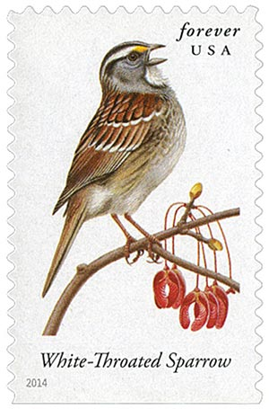 2014 First-Class Forever Stamp - Songbirds: White-Throated Sparrow