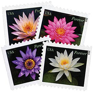 2015 First-Class Forever Stamp - Water Lilies