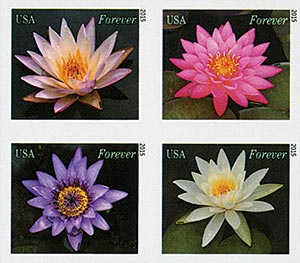 2015 First-Class Forever Stamp - Imperforate Water Lilies