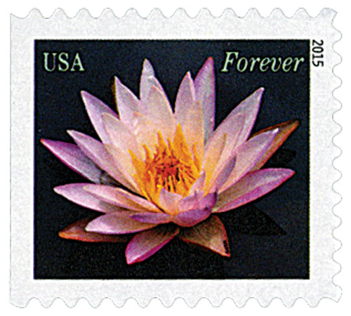 2015 First-Class Forever Stamp - Water Lilies: Pale Pink
