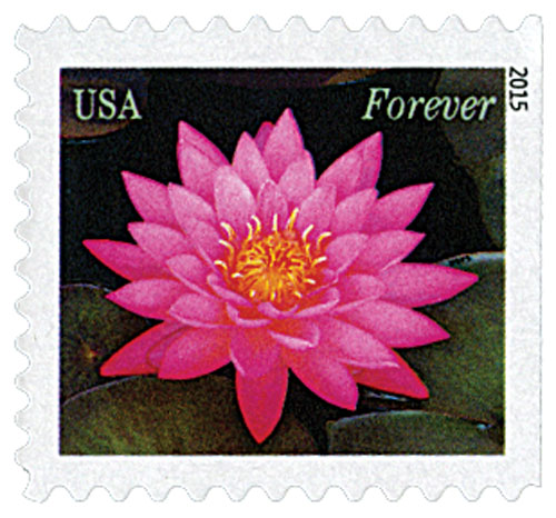 2015 First-Class Forever Stamp - Water Lilies: Red