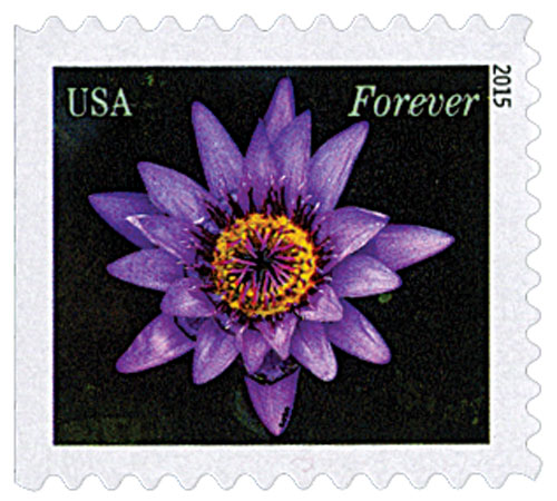 2015 First-Class Forever Stamp - Water Lilies: Purple