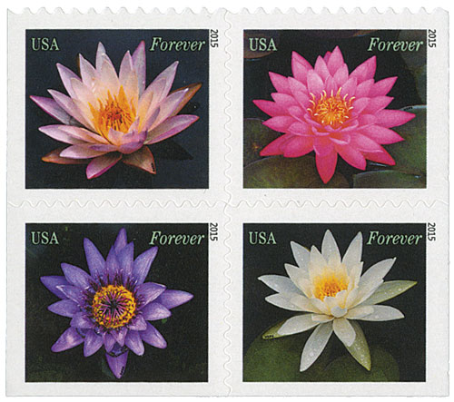 2015 49c Water Lilies, block of 4 stamps