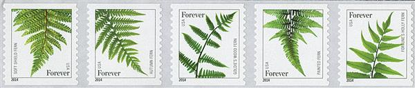 2015 First-Class Forever Stamp - Ferns (with microprinting)