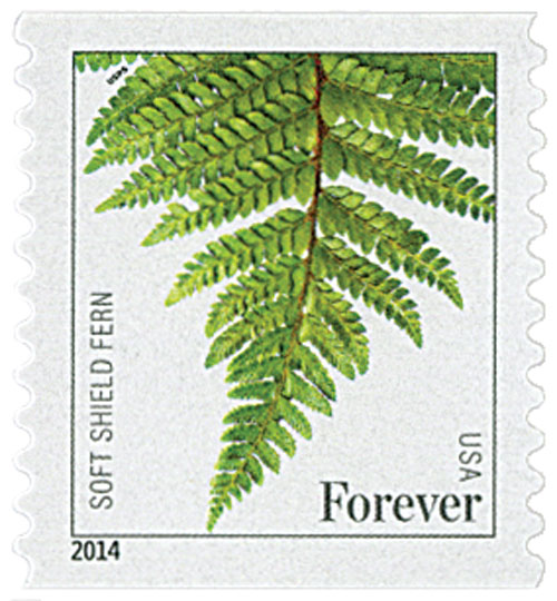 2015 First-Class Forever Stamp - Ferns (with microprinting): Soft Shield Fern