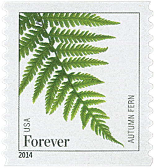 2015 First-Class Forever Stamp - Ferns (dated 2014): Autumn Fern