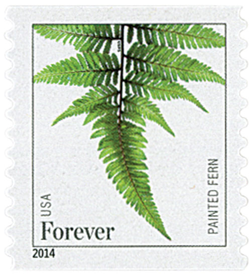 2015 First-Class Forever Stamp - Ferns (dated 2014): Painted Fern