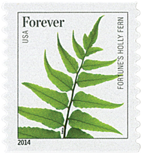 2015 First-Class Forever Stamp - Ferns (with microprinting): Fortunes Holly Fern