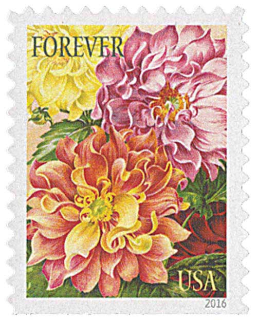 2016 First Class Forever Stamp Botanical Art Dahlias