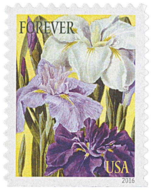 2016 First-Class Forever Stamp - Botanical Art: Japanese Irises