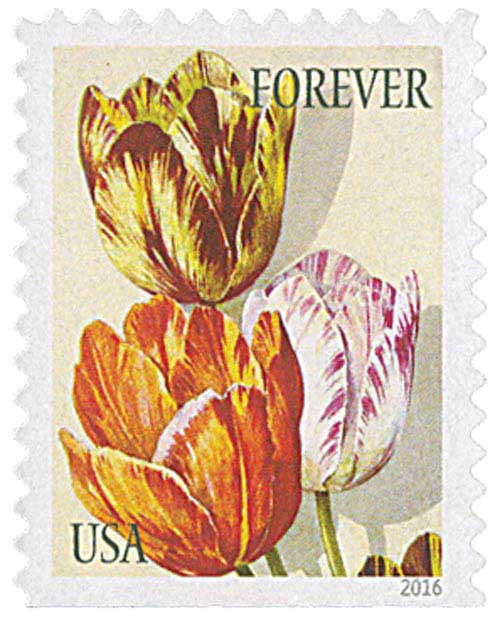 2016 First-Class Forever Stamp - Botanical Art: Orange, Yellow and Purple Tulips