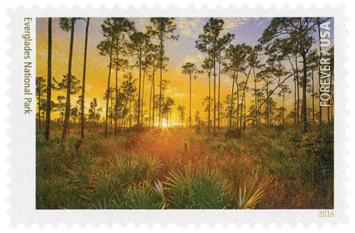 2016 First-Class Forever Stamp - National Parks Centennial: Everglades National Park