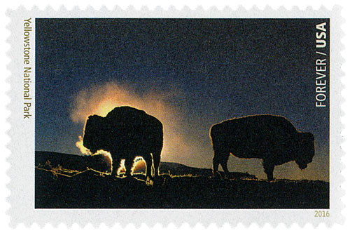2016 First-Class Forever Stamp - National Parks Centennial: Yellowstone National Park
