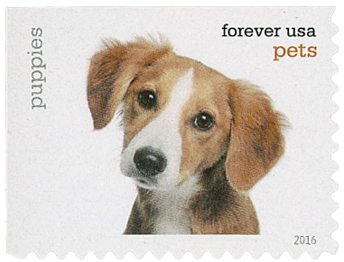 2016 First-Class Forever Stamp - Pets: Puppies