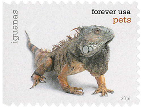 2016 First-Class Forever Stamp - Pets: Iguanas