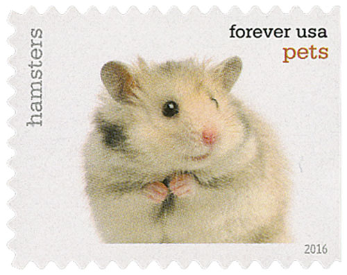2016 First-Class Forever Stamp - Pets: Hamsters