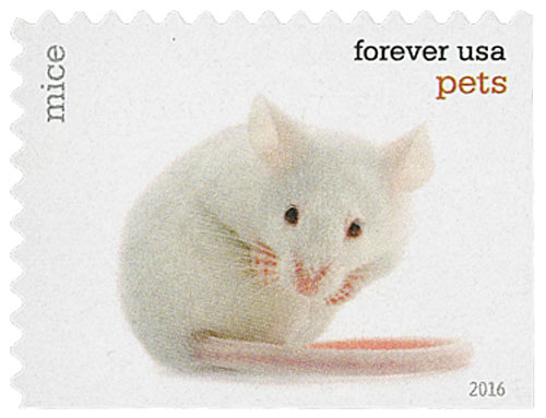 2016 First-Class Forever Stamp - Pets: Mice