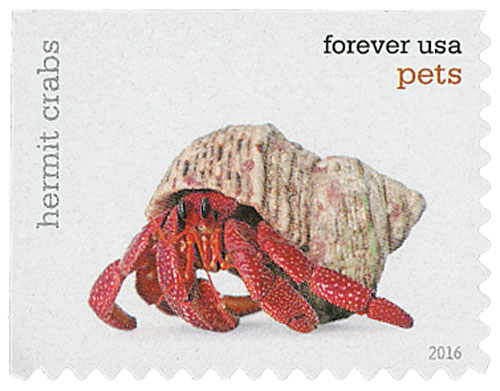 2016 First-Class Forever Stamp - Pets: Hermit Crabs