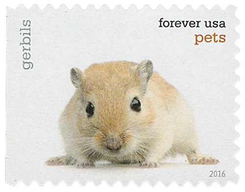 2016 First-Class Forever Stamp - Pets: Gerbils