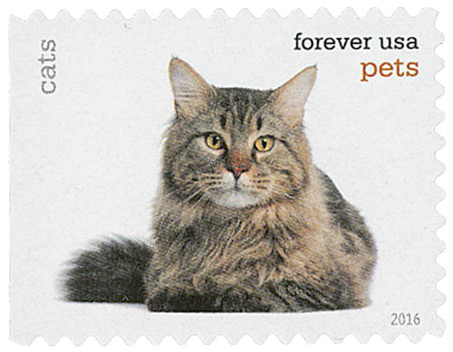 2016 First-Class Forever Stamp - Pets: Cats