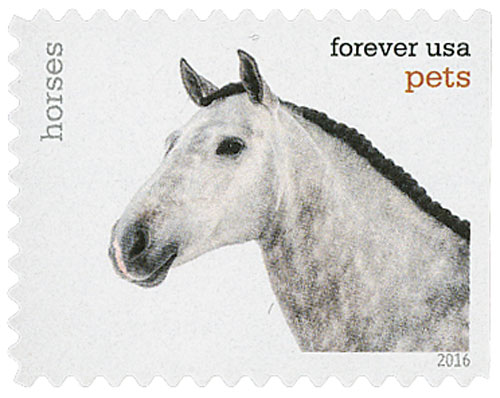 2016 First-Class Forever Stamp - Pets: Horses