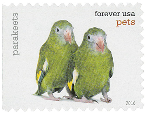 2016 First-Class Forever Stamp - Pets: Parakeets