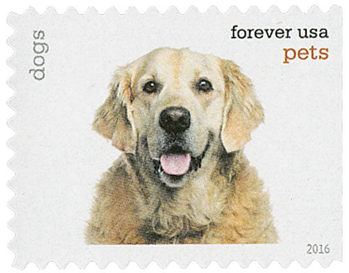 2016 First-Class Forever Stamp - Pets: Dogs