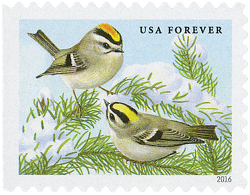 2016 First-Class Forever Stamp - Songbirds in Snow: Golden-Crowned Kinglets