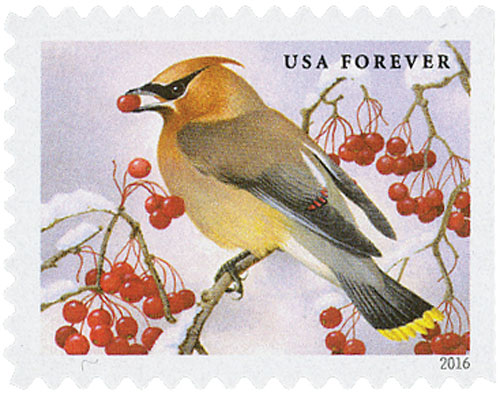 2016 First-Class Forever Stamp - Songbirds in Snow: Cedar Waxwing