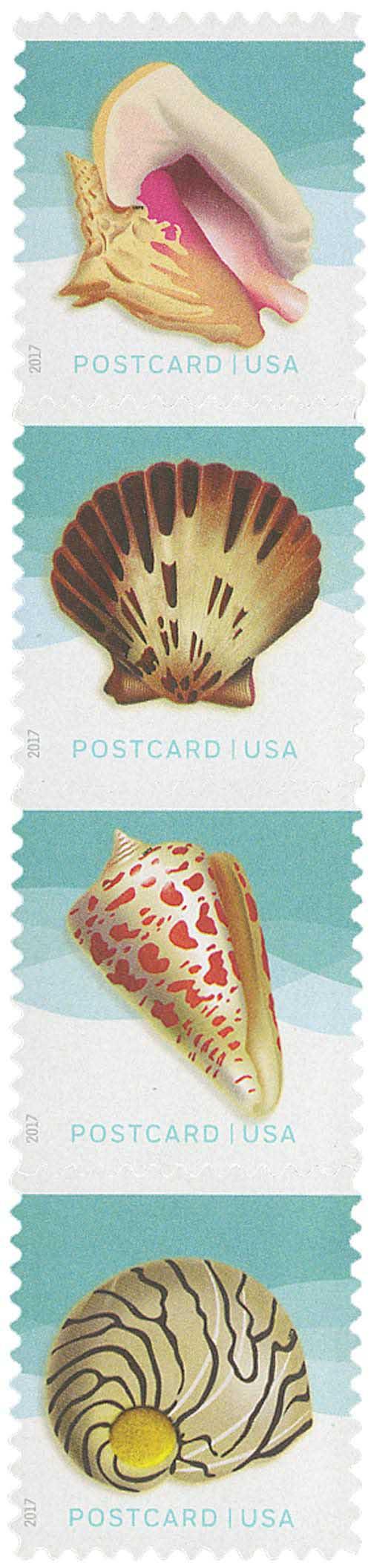 2017 34c Seashells