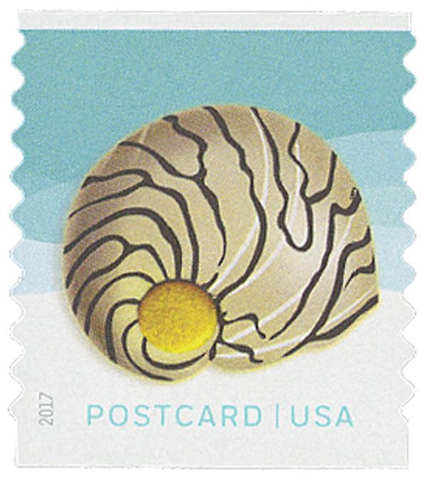 2017 34c Seashells: Zebra Nerite, coil