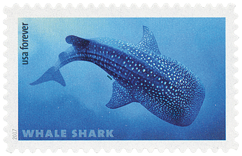2017 First-Class Forever Stamp - Sharks: Whale Shark