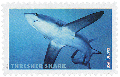 2017 First-Class Forever Stamp - Sharks: Thresher Shark