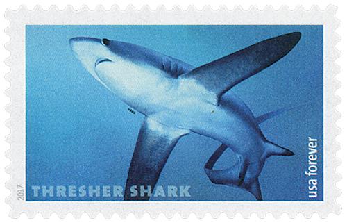 2017 First-Class Forever Stamp - Sharks: Thresher Shark